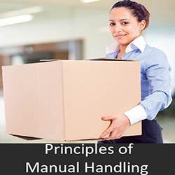 Priiples of manual handling